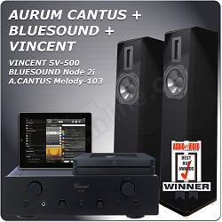 VINCENT + A.CANTUS M-103 + NODE 2i