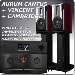 VINCENT + AURUM CANTUS + CAMBRIDGE