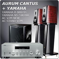 YAMAHA R-N803D+AURUM CANTUS V2M