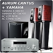 YAMAHA R-N803N+AURUM CANTUS V2M